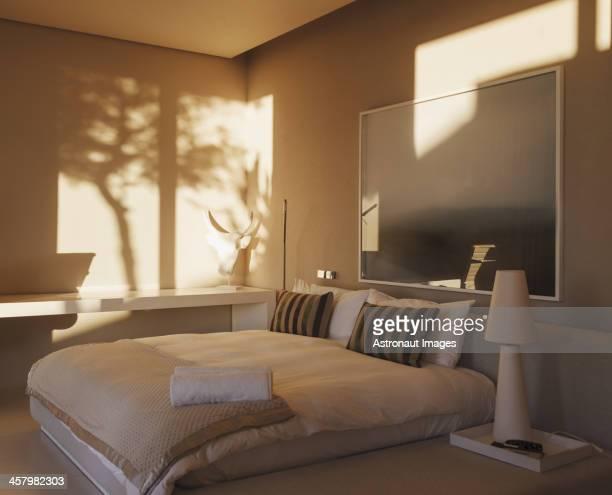 Reflet d'arbres sur un mur dans une chambre moderne
