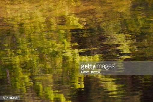 Reflection on water : Stock-Foto