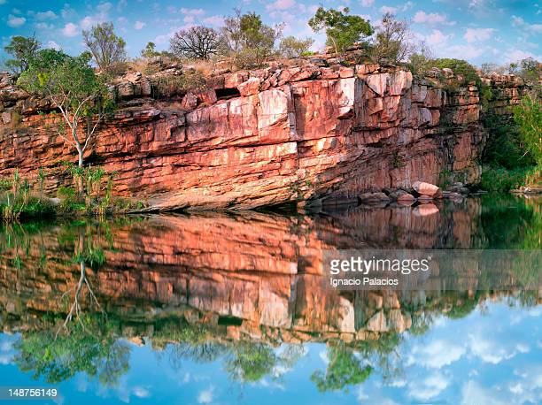 Reflections at Mount Barnet campsite (Manning Gorge).