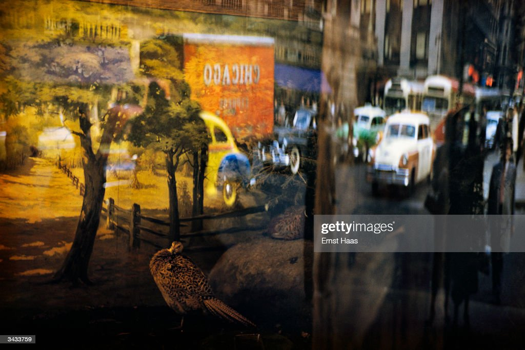 Reflections in a shop window on Forty-Second street. Colour photography book
