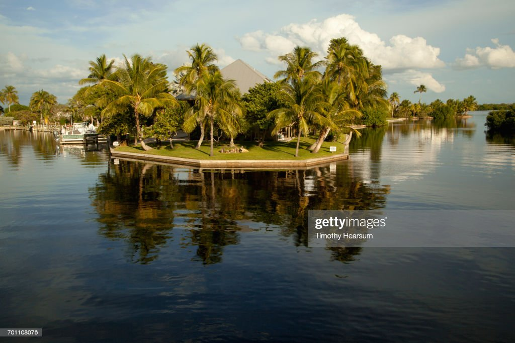 Reflections of palm trees and clouds in a still cove : Stock Photo