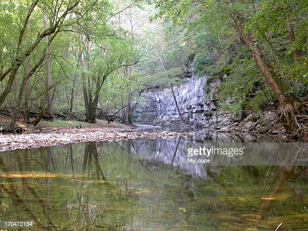 Reflections of White Limestone Palisade Cliffs in Clear Stream in Lower Howard's Creek Nature and Heritage Preserve Kentucky