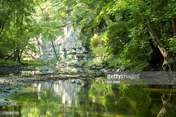 Reflections Of White Limestone Palisade Cliffs In Clear Stream Photograph Taken In Lower Howards Creek Nature And Heritage Preserve In The Bluegrass...