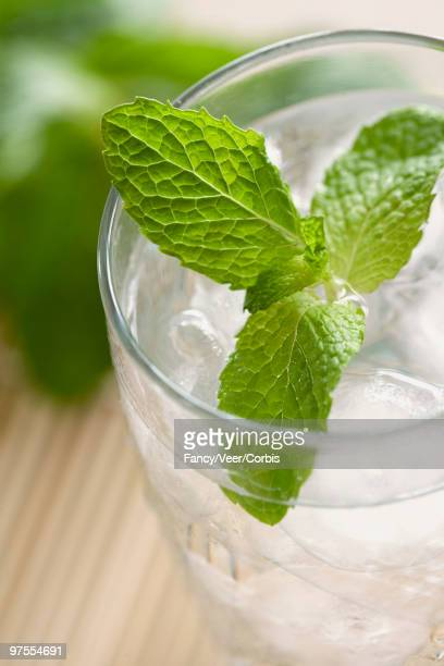 Refreshing glass of water with mint
