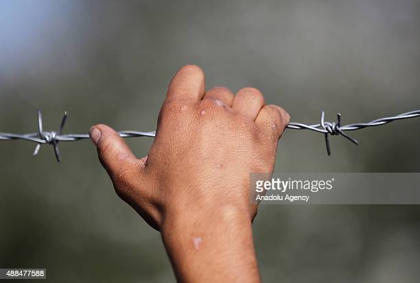 A refugee boy holds the razor wire in Horgos Serbia as refugees continue waiting on the Serbian Hungarian border after Hungarian authorities closed...