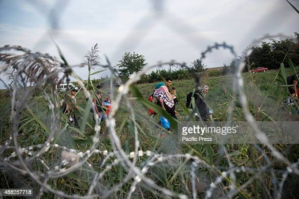 Refugees being turned away by the Hungarian police and trying to find alternative way to enter Hungary in Serbia side of the border Hungarian...