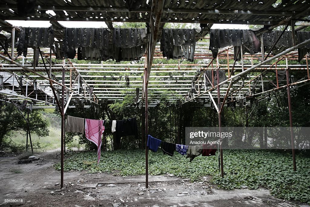 Refugees' laundry are seen in the garden of an abandoned house as they try to continue their daily life near Idomeni refugee camp in Greece on May 25, 2016.