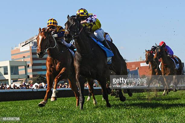Regan Bayliss riding Henwood defeats Jackie Beriman riding Eximius in Race 3 during Melbourne Racing at Caulfield Racecourse on August 30 2014 in...