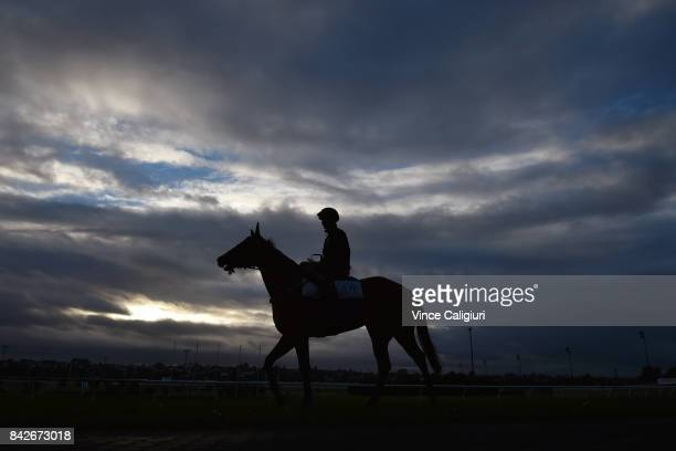 Regan Bayliss riding Houtzen after a track gallop at Moonee Valley Racecourse on September 5 2017 in Melbourne Australia