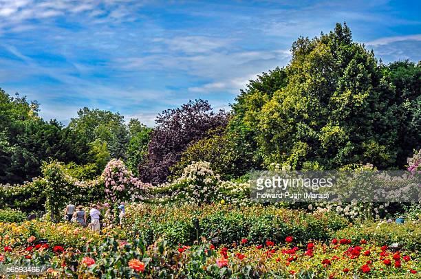 Regent's Park Gardens