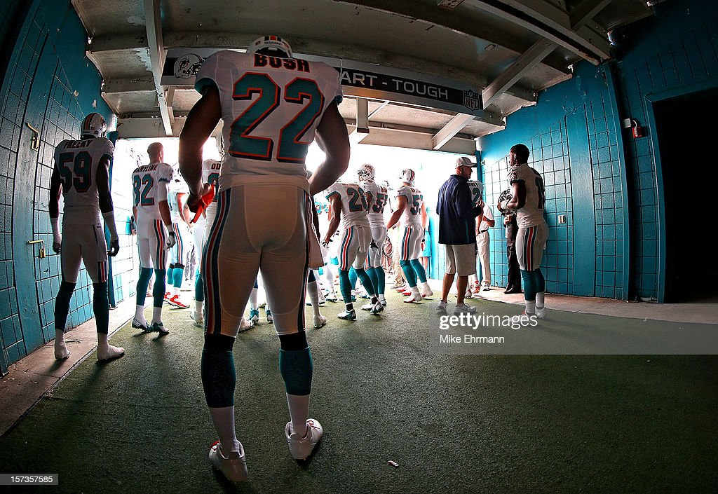<a gi-track='captionPersonalityLinkClicked' href=/galleries/search?phrase=Reggie+Bush&family=editorial&specificpeople=183392 ng-click='$event.stopPropagation()'>Reggie Bush</a> #22 of the Miami Dolphins prepares to take the field during a game against the New England Patriots at Sun Life Stadium on December 2, 2012 in Miami Gardens, Florida.