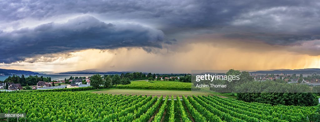 Reichenau Island, Lake Constance, Panoramic View; Germany, Baden-Wuerttemberg