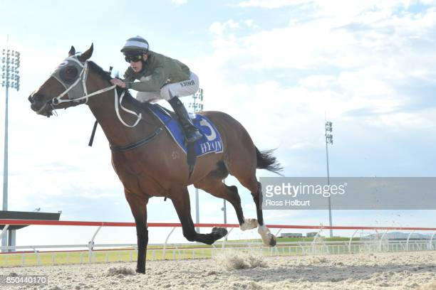 Reigning in Paris ridden by Nathan Punch winning the Pakenham Produce BM58 Handicap at Racingcom Park Synthetic Racecourse on September 21 2017 in...