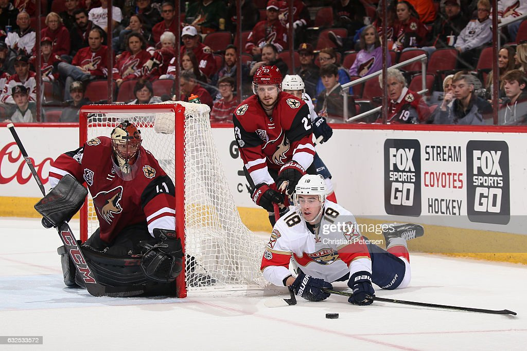 Florida Panthers v Arizona Coyotes
