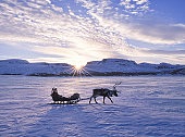 Reindeer pulling Santa on sled over frozen lake