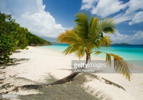 Relax in the Virgin Islands