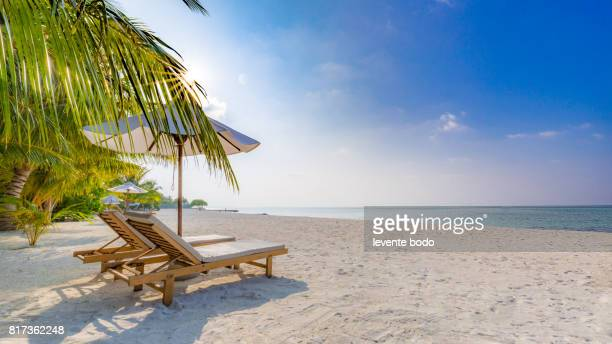 Relaxing beach scene. Chairs and umbrella in palm beach - Tropical holiday banner