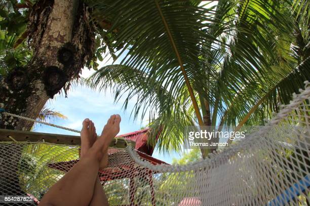 Relaxing in a hammock under palm trees