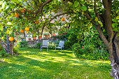 Recreation in beautiful green garden with Chairs