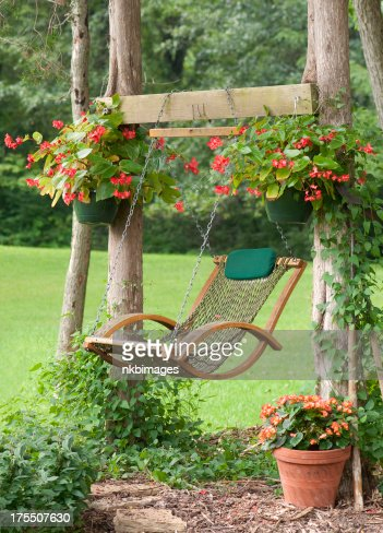 Relaxing Spot In The Garden With Swing And Potted Flowers