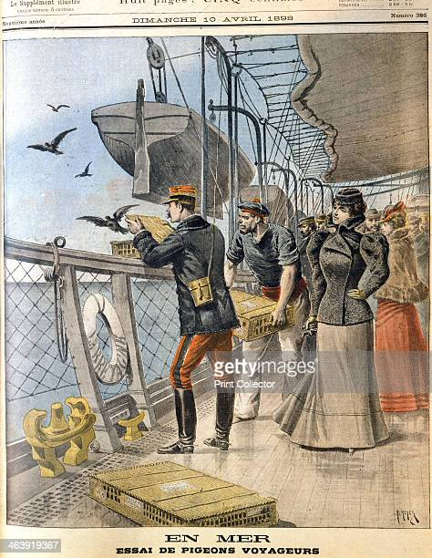 Releasing French army homing pigeons on board the transatlantic liner 'La Bretagne' 1898 The birds were released on the voyage between Le Havre and...