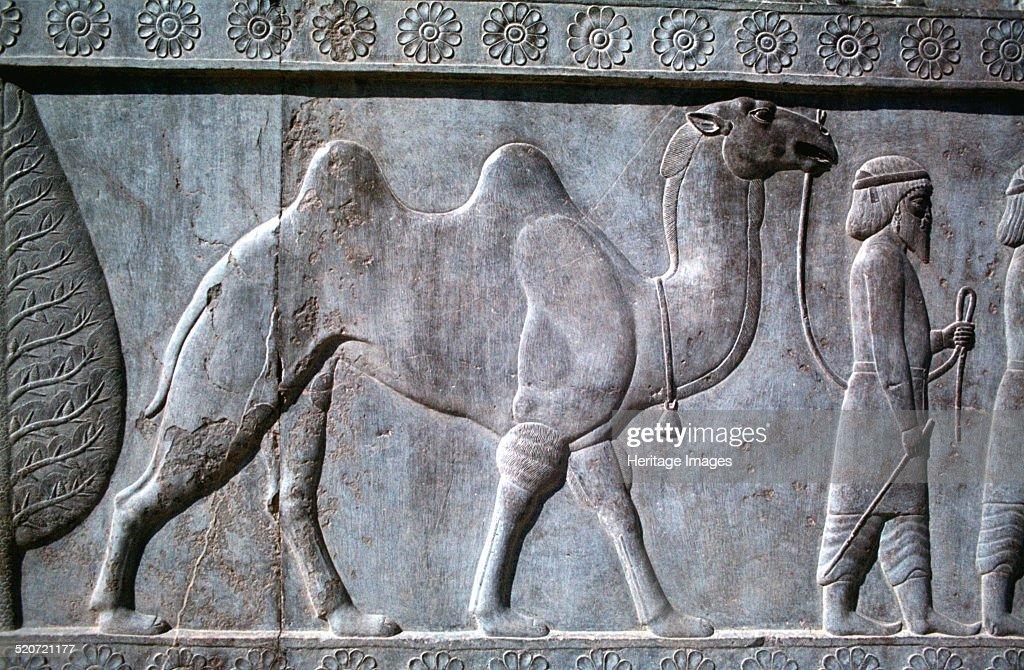 Relief of parthians the apadana persepolis iran