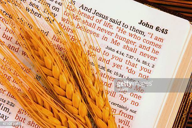 Religious: I Am the Bread Bible scripture with wheat (horizontal)