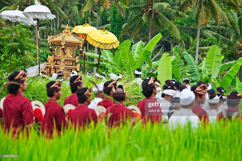 Religious procession, Ubud, Bali : Stock Photo
