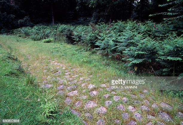 Remains of a Roman road Blackpool Bridge Forest of Dean Gloucestershire England United Kingdom Roman civilisation