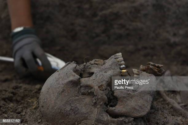 Remains of one of the seven people murdered by proFranco forces in 1936 and placed in a mass grave near of the small village de Cobertelada Soria's...