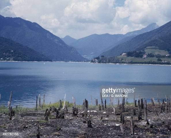 Remains of piles Lake of Ledro piledwelling settlement TrentinoAlto Adige Italy