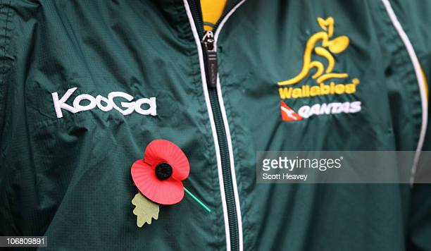 Remembrance Day poppy is pinned onto a Wallabies tracksuit prior to the Investec international test match between England and Australia at Twickenham...