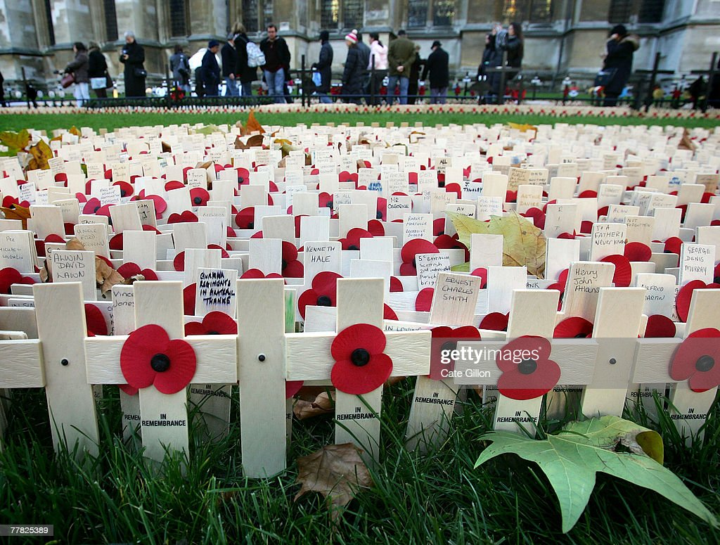 fields of remembrance poppies ahead of sunday u0027s service photos and