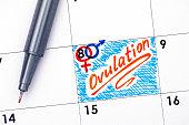 Reminder Ovulation in calendar with orange pen. Close-up.