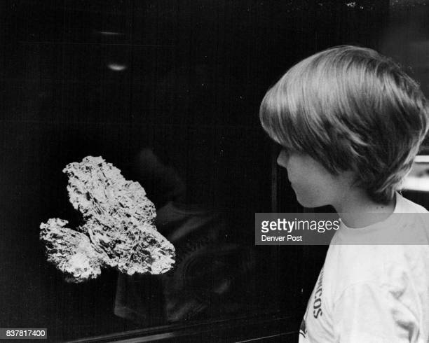 Remnants of Largest Colorado Gold Nugget Displayed Jack Dillon 145 S Garfield looks at Tom's Baby' largest piece of gold ever discovered in Colorado...