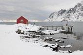 Remote house in coastal landscape, Skjelfjord,  Flakstadoya,   Loftofen,  Norway