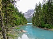 A remote turquoise river feeding into Kinney Lake, deep in the wilderness of the Rockies.  This photo was taken along the Berg Lake Trail in Mount Robson Provincial Park, British Columbia, Canada.