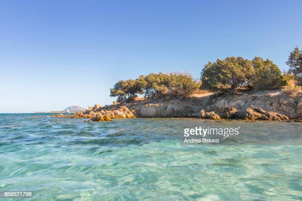Rena Bianca beach in Portisco (Olbia) Costa Smeralda, Olbia-Tempio province, Sardinia district, Italy