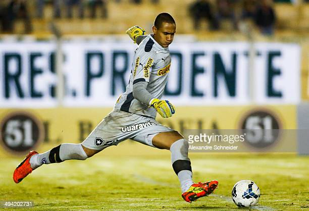 Renan goalkeeper of Botafogo runs for the ball during the match between Palmeiras and Botafogo for the Brazilian Series A 2014 at Paulo Constantino...