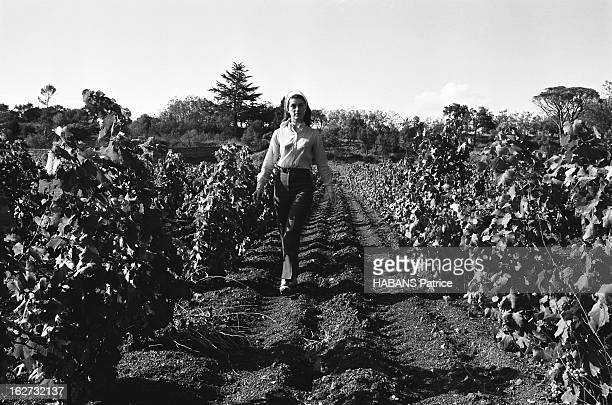 Rendezvous With Sheila On Holiday Attitude de SHEILA posant au milieu des vignes de sa propriété de SAINTRAPHAEL