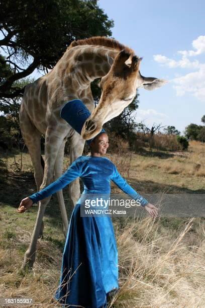 Rendezvous With Simphiwe Dana In South Africa La chanteuse Simphiwe DANA 26 ans nouvelle grande dame de la soul sudafricaine pose avec une girafe...
