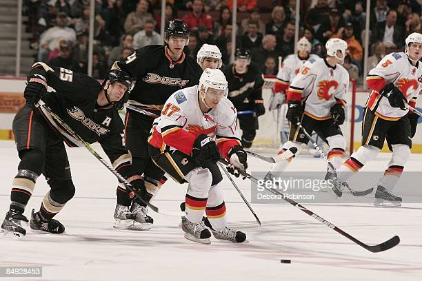 Rene Bourque of the Calgary Flames drives the puck against Chris Pronger and Chris Kunitz of the Anaheim Ducks during the game on February 11 2009 at...