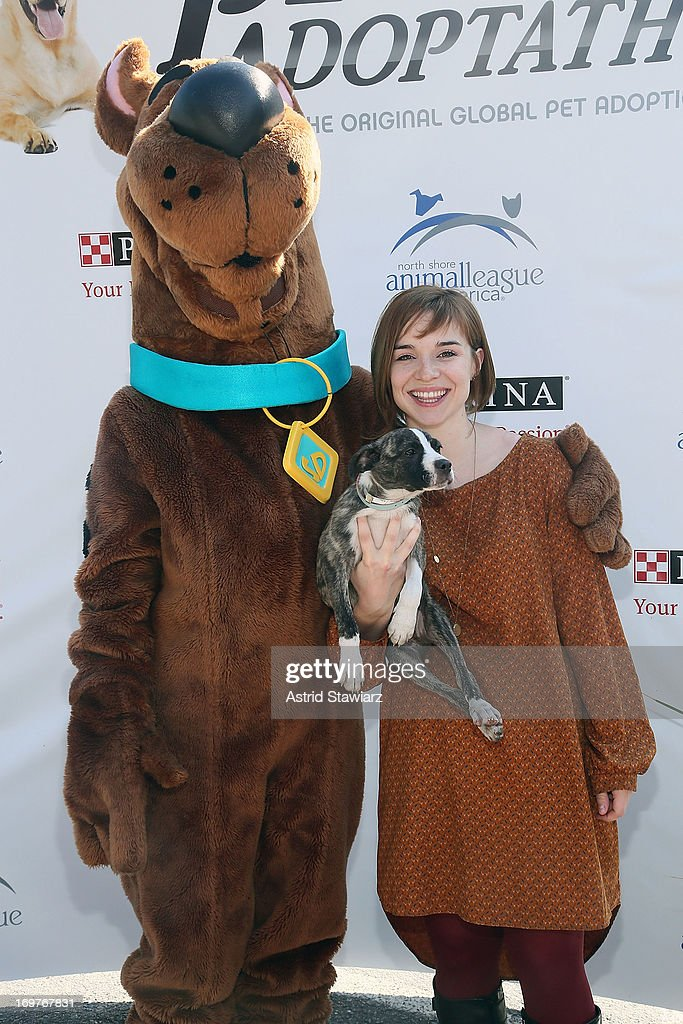 Renee Felice Smith attends the 19th Annual Pet Adoptathon at North Shore Animal League America on June 1, 2013 in Port Washington, New York.