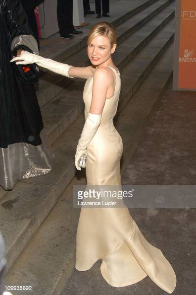 Renee Zellweger in Carolina Herrera during The 2003 CFDA Fashion Awards Arrivals at New York Public Library in New York City New York United States