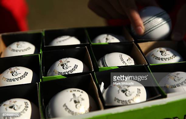 Renegades bowlers choose a Kookaburra cricket ball to open the bowling during the Women's Big Bash League match between the Melbourne Renegades and...