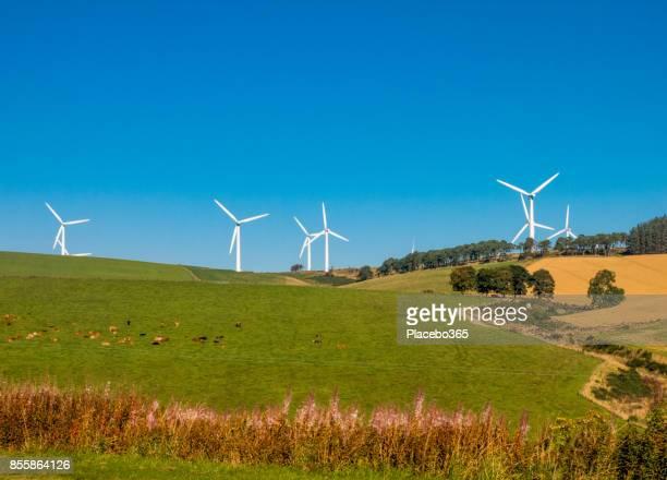 Renewable Energy Rural Wind Farm