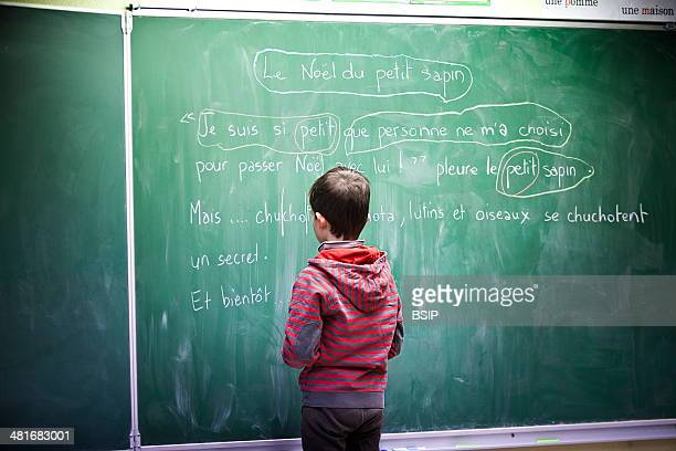 Reportage in Les Helices Vertes primary school in Cerny France Year 2 year 3 multilevel class