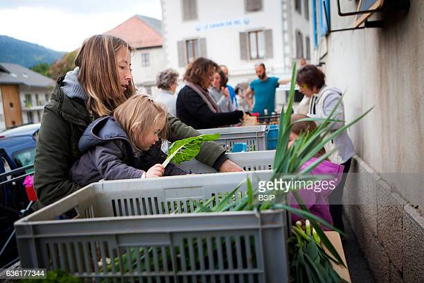 Reportage on organic producers working using a communityshared agriculture model in HauteSavoie France R_mi has been an organic fruit and vegetable...