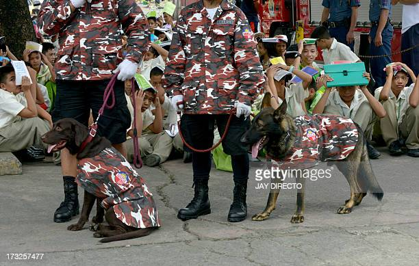 A K9 rescue dog team take part in an earthquake and rescue drill at a government school in Manila on July 11 2013 The event is part of the 11th Asian...