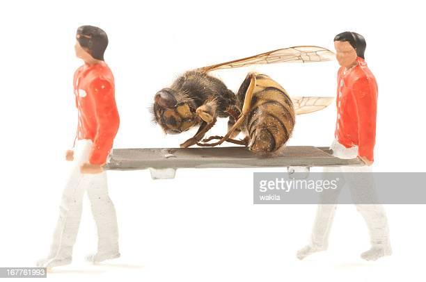rescue hornet